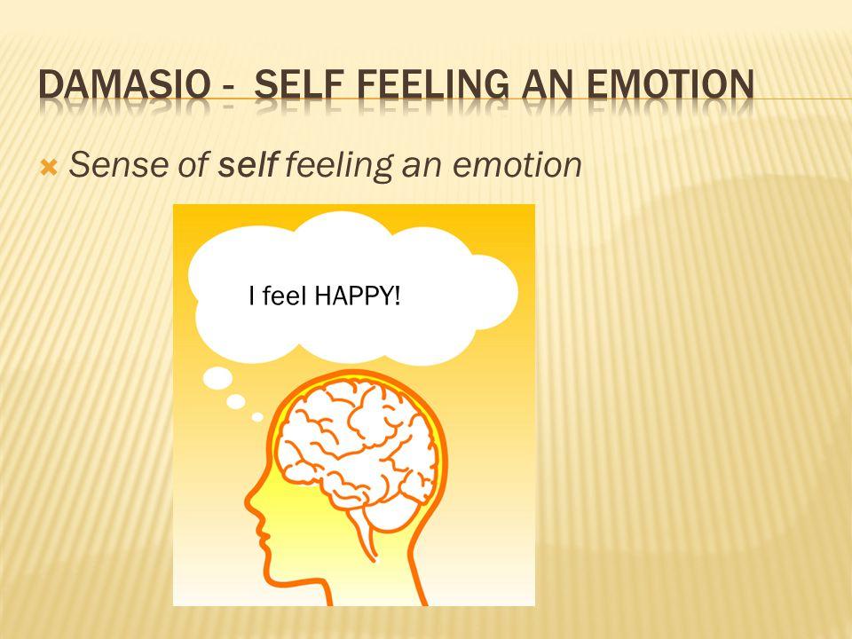  Sense of self feeling an emotion I feel HAPPY!