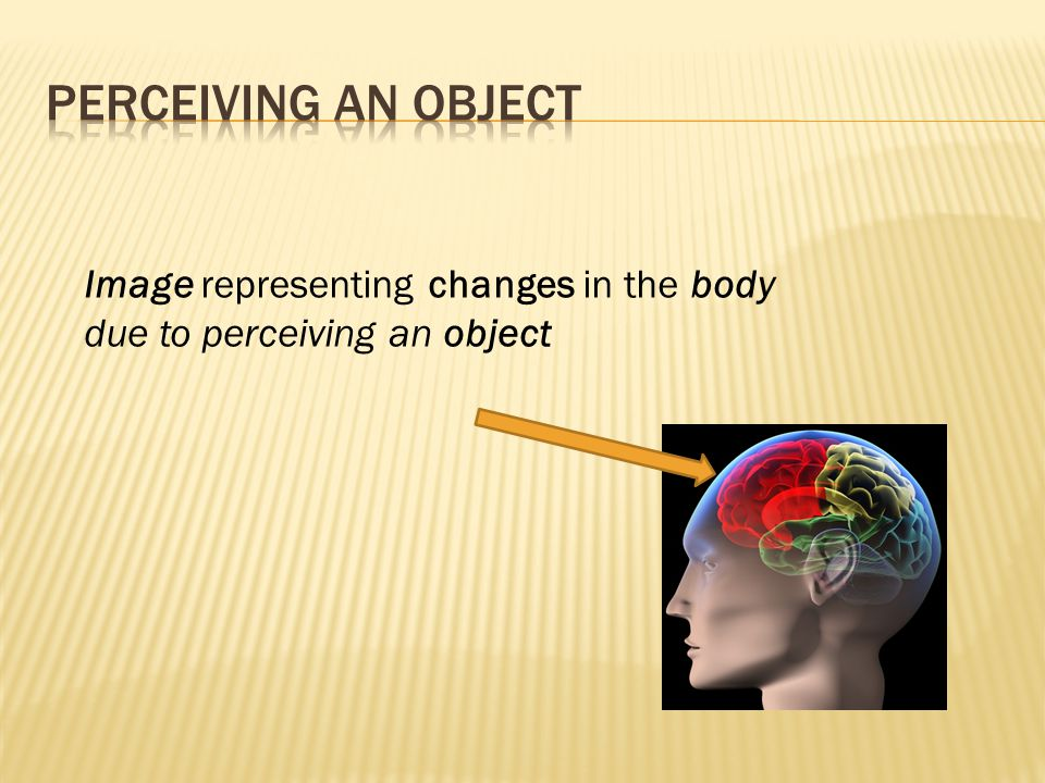 Image representing changes in the body due to perceiving an object