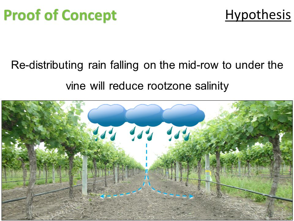 Re-distributing rain falling on the mid-row to under the vine will reduce rootzone salinity Hypothesis Proof of Concept
