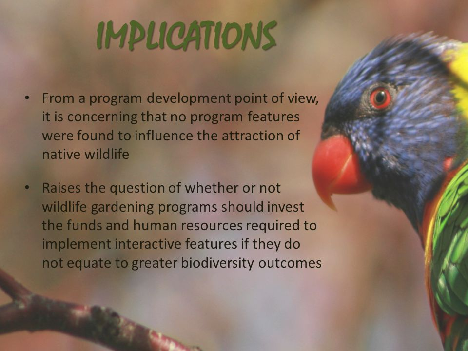 IMPLICATIONS From a program development point of view, it is concerning that no program features were found to influence the attraction of native wildlife Raises the question of whether or not wildlife gardening programs should invest the funds and human resources required to implement interactive features if they do not equate to greater biodiversity outcomes