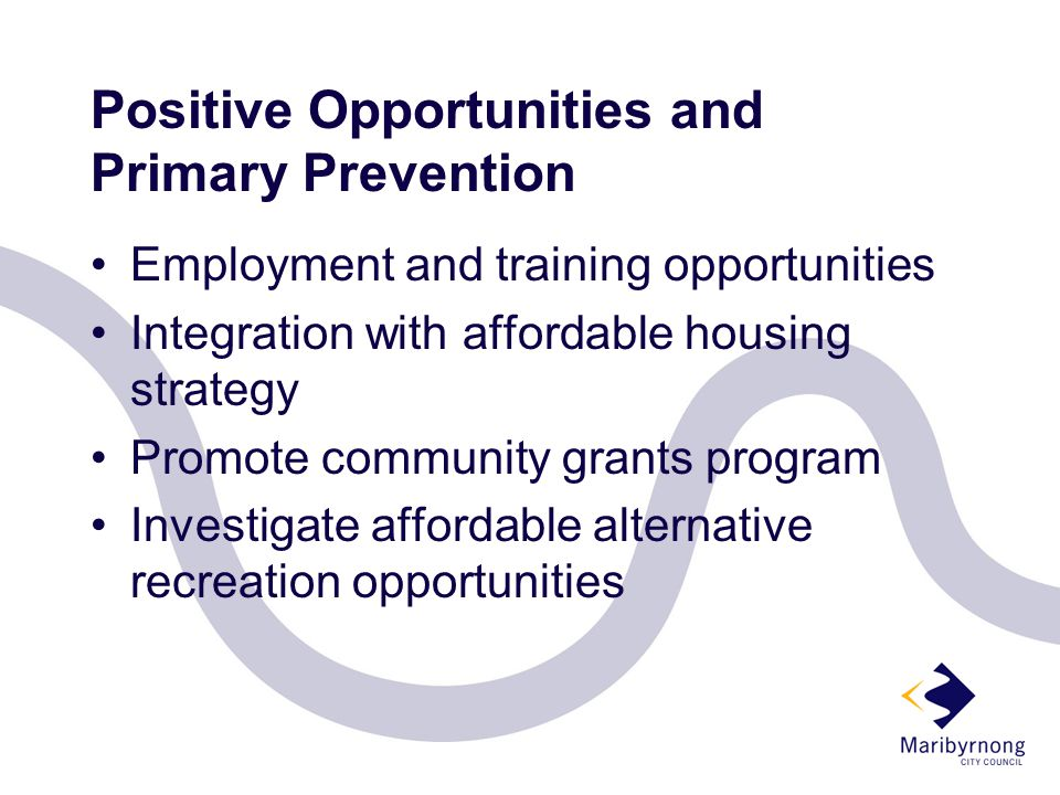 Positive Opportunities and Primary Prevention Employment and training opportunities Integration with affordable housing strategy Promote community grants program Investigate affordable alternative recreation opportunities