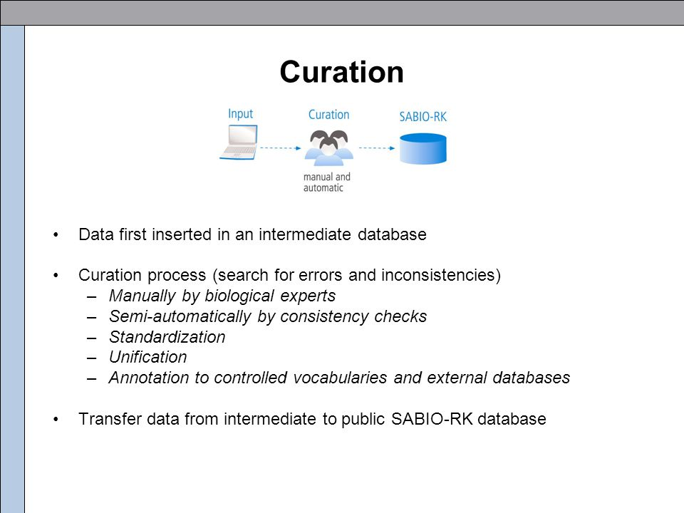 Curation Data first inserted in an intermediate database Curation process (search for errors and inconsistencies) –Manually by biological experts –Semi-automatically by consistency checks –Standardization –Unification –Annotation to controlled vocabularies and external databases Transfer data from intermediate to public SABIO-RK database