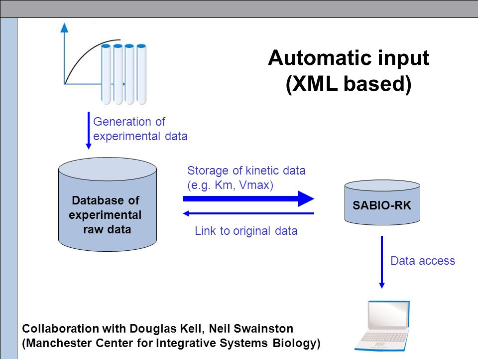 Automatic input (XML based) SABIO-RK Database of experimental raw data Storage of kinetic data (e.g. Km, Vmax) Link to original data Data access Gener