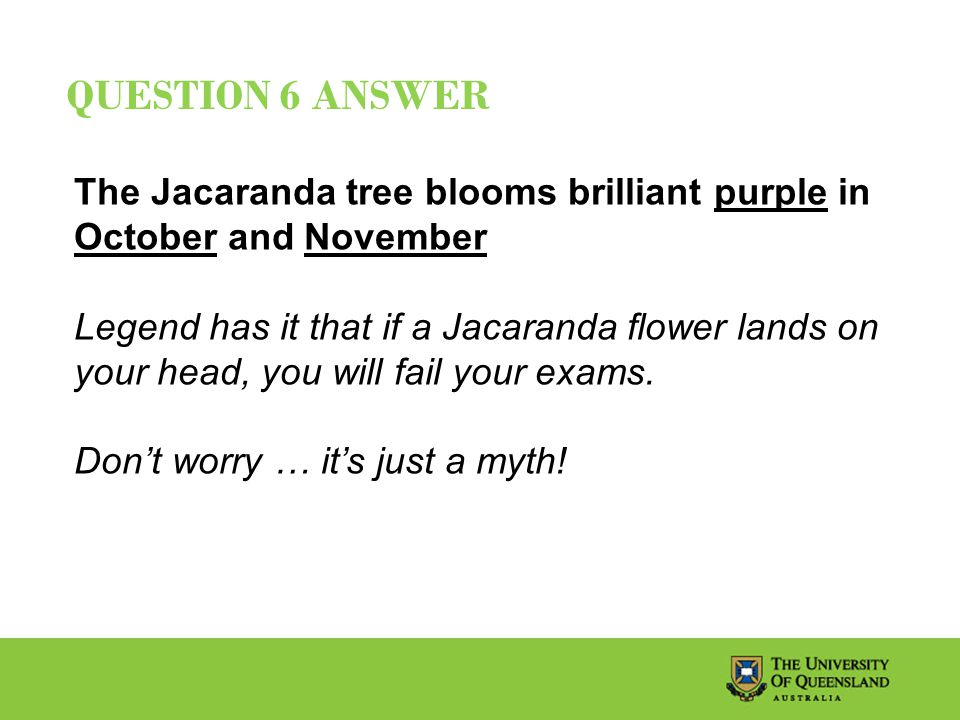 QUESTION 6 ANSWER The Jacaranda tree blooms brilliant purple in October and November Legend has it that if a Jacaranda flower lands on your head, you will fail your exams.