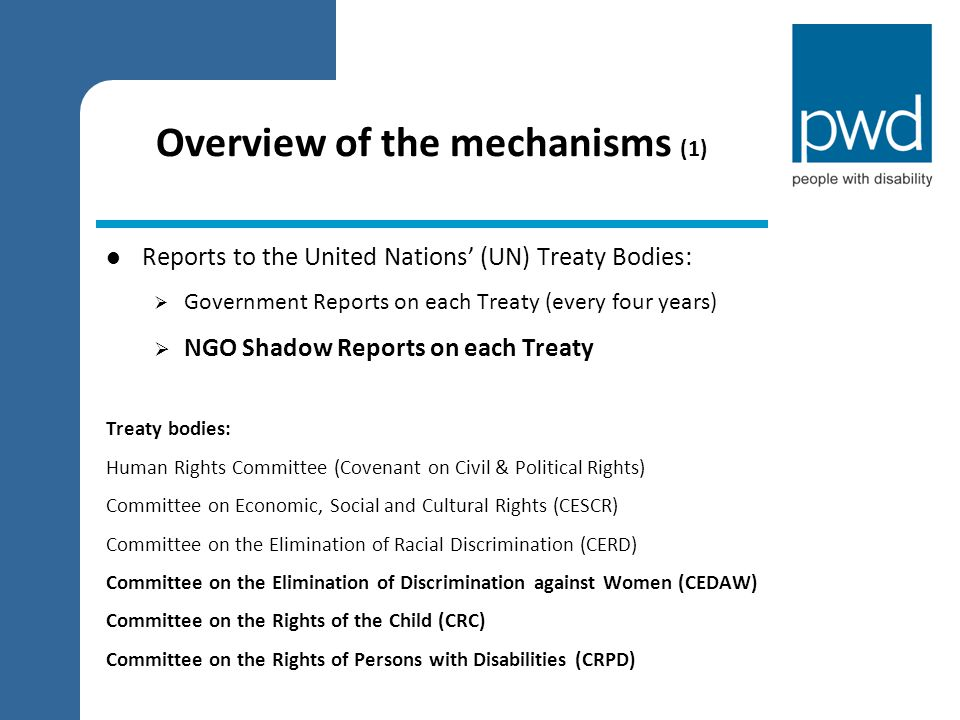 Overview of the mechanisms (1) Reports to the United Nations' (UN) Treaty Bodies:  Government Reports on each Treaty (every four years)  NGO Shadow