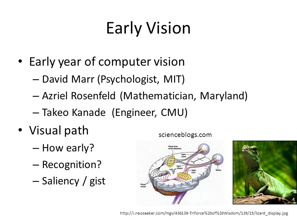 Early Vision Early year of computer vision – David Marr (Psychologist, MIT) – Azriel Rosenfeld (Mathematician, Maryland) – Takeo Kanade (Engineer, CMU) Visual path – How early.