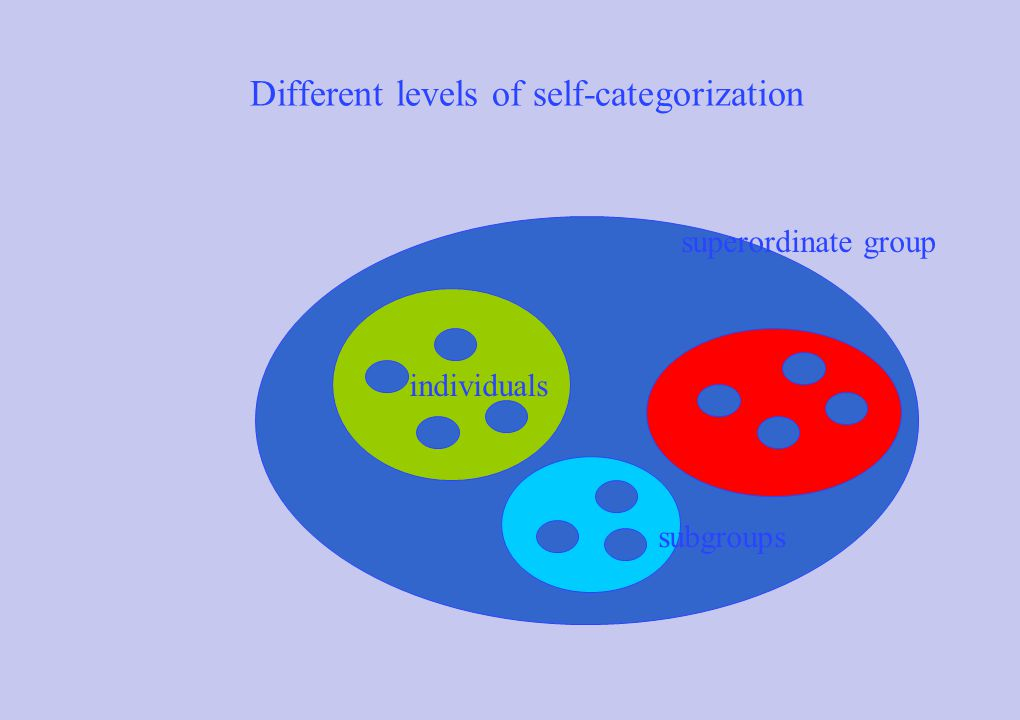 Different levels of self-categorization individuals subgroups superordinate group