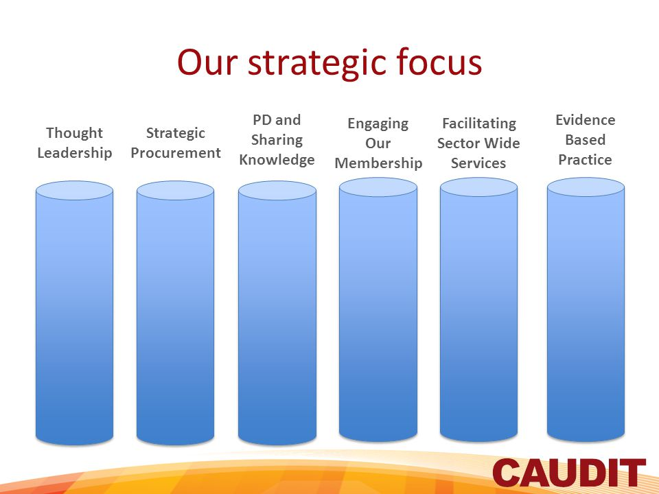 Our strategic focus Thought Leadership Strategic Procurement PD and Sharing Knowledge Engaging Our Membership Facilitating Sector Wide Services Evidence Based Practice