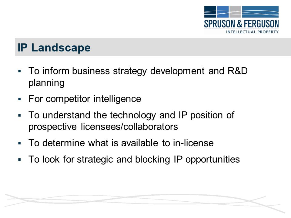 Different IP Business Strategies  Comprehensive product protection by building mutually reinforcing bundles of rights including patents, designs, copyright and brands  Placing roadblocks in competitors' paths  Generating cross-licensing currency to deal with blocking rights of third parties  Building value for market perception  Fit with technology/IP deficits of prospective licensees