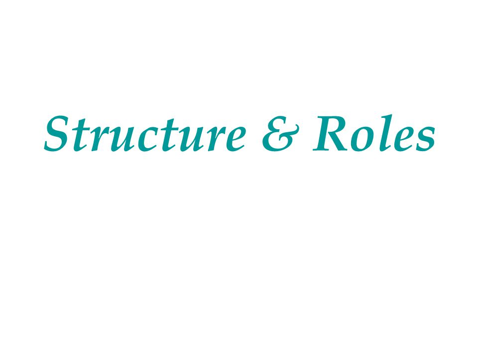 Structure & Roles