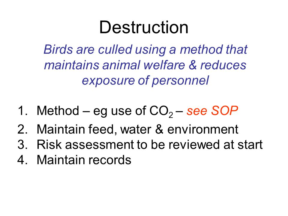 Destruction 1.Method – eg use of CO 2 – see SOP 2.Maintain feed, water & environment 3.Risk assessment to be reviewed at start 4.Maintain records Bird