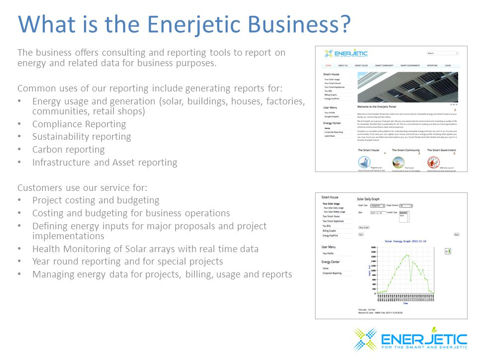 What is the Enerjetic Business.
