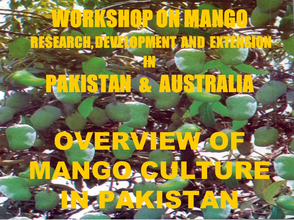 WORKSHOP ON MANGO RESEARCH, DEVELOPMENT AND EXTENSION IN PAKISTAN & AUSTRALIA OVERVIEW OF MANGO CULTURE IN PAKISTAN