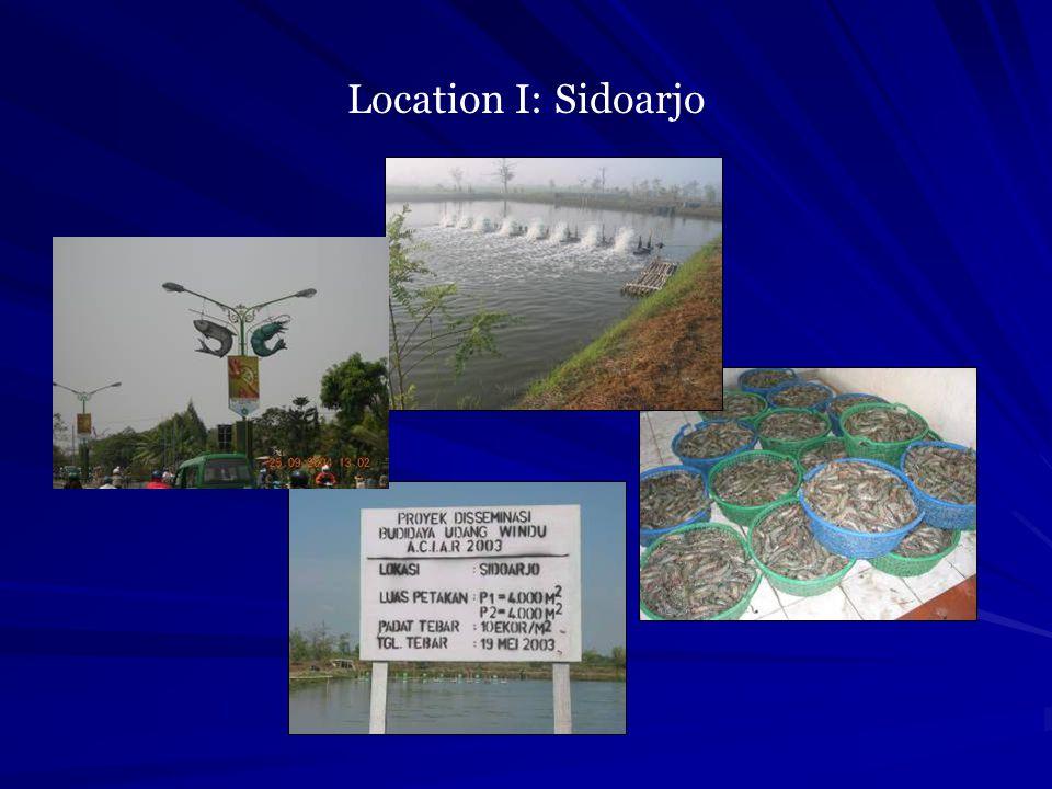 Location I: Sidoarjo