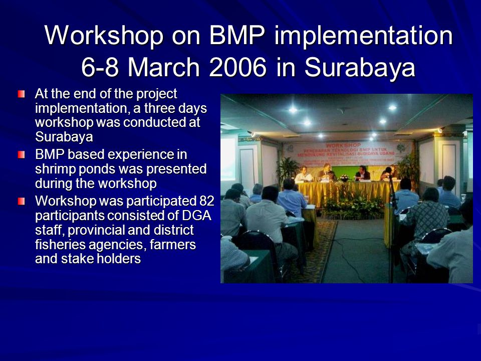 Workshop on BMP implementation 6-8 March 2006 in Surabaya At the end of the project implementation, a three days workshop was conducted at Surabaya BM