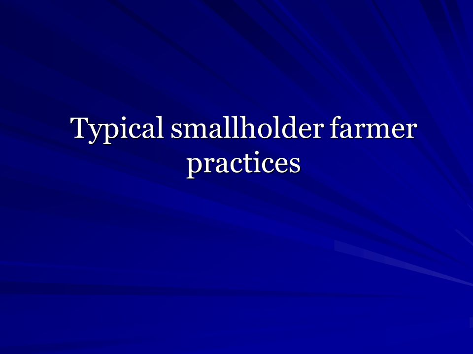Typical smallholder farmer practices