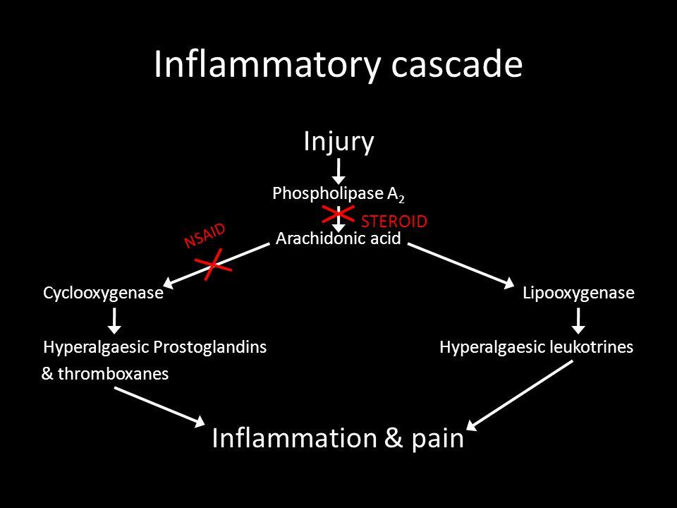 Injury Phospholipase A 2 Arachidonic acid Cyclooxygenase Lipooxygenase Hyperalgaesic Prostoglandins Hyperalgaesic leukotrines & thromboxanes Inflammation & pain Inflammatory cascade NSAID STEROID