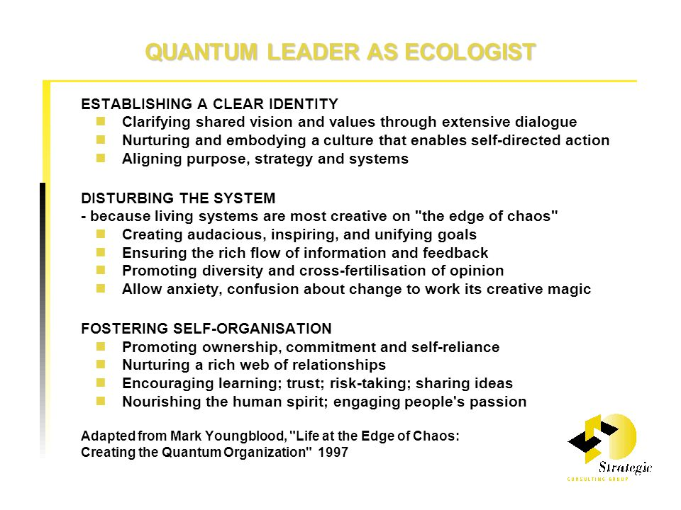 QUANTUM LEADER AS ECOLOGIST ESTABLISHING A CLEAR IDENTITY Clarifying shared vision and values through extensive dialogue Nurturing and embodying a culture that enables self-directed action Aligning purpose, strategy and systems DISTURBING THE SYSTEM - because living systems are most creative on the edge of chaos Creating audacious, inspiring, and unifying goals Ensuring the rich flow of information and feedback Promoting diversity and cross-fertilisation of opinion Allow anxiety, confusion about change to work its creative magic FOSTERING SELF-ORGANISATION Promoting ownership, commitment and self-reliance Nurturing a rich web of relationships Encouraging learning; trust; risk-taking; sharing ideas Nourishing the human spirit; engaging people s passion Adapted from Mark Youngblood, Life at the Edge of Chaos: Creating the Quantum Organization 1997