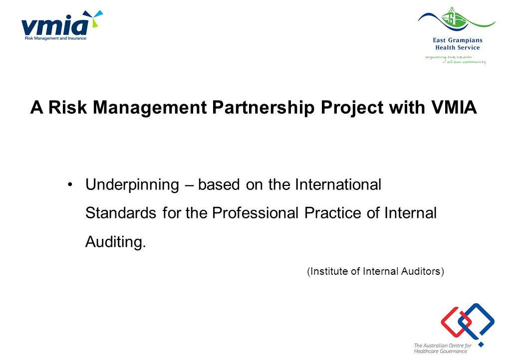 Underpinning – based on the International Standards for the Professional Practice of Internal Auditing. (Institute of Internal Auditors) A Risk Manage