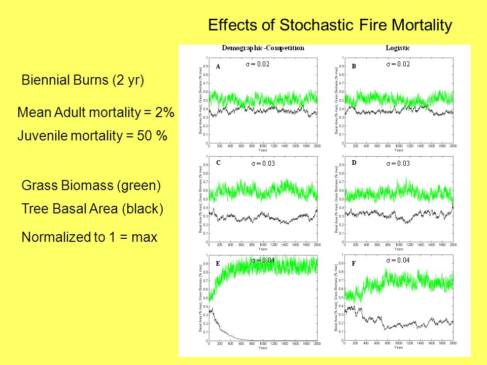 Effects of Stochastic Fire Mortality Biennial Burns (2 yr) Mean Adult mortality = 2% Juvenile mortality = 50 % Grass Biomass (green) Tree Basal Area (black) Normalized to 1 = max
