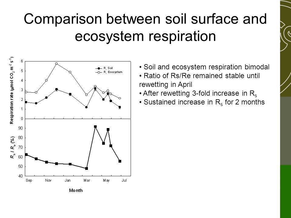Comparison between soil surface and ecosystem respiration Soil and ecosystem respiration bimodal Ratio of Rs/Re remained stable until rewetting in April After rewetting 3-fold increase in R s Sustained increase in R s for 2 months