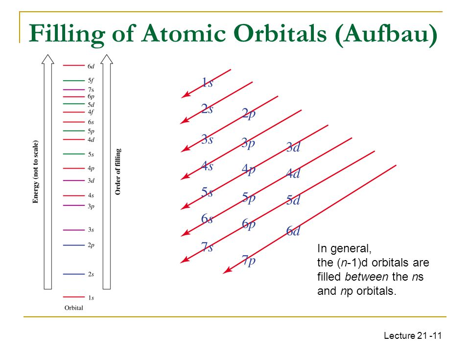 Lecture 21 -11 Filling of Atomic Orbitals (Aufbau) In general, the (n-1)d orbitals are filled between the ns and np orbitals.