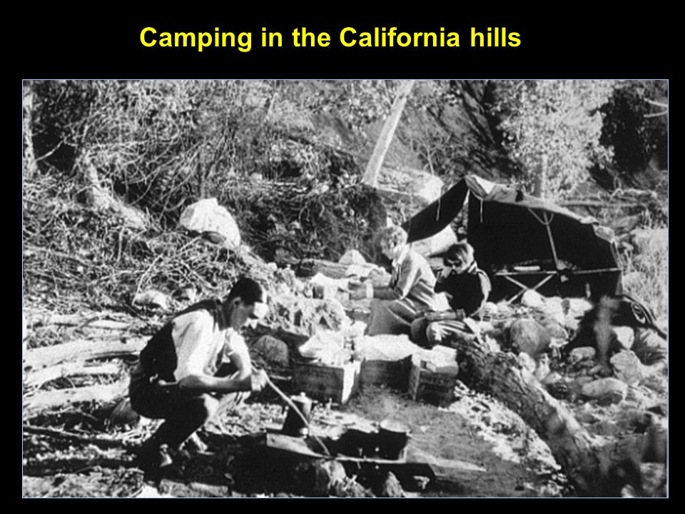 Camping in the California hills