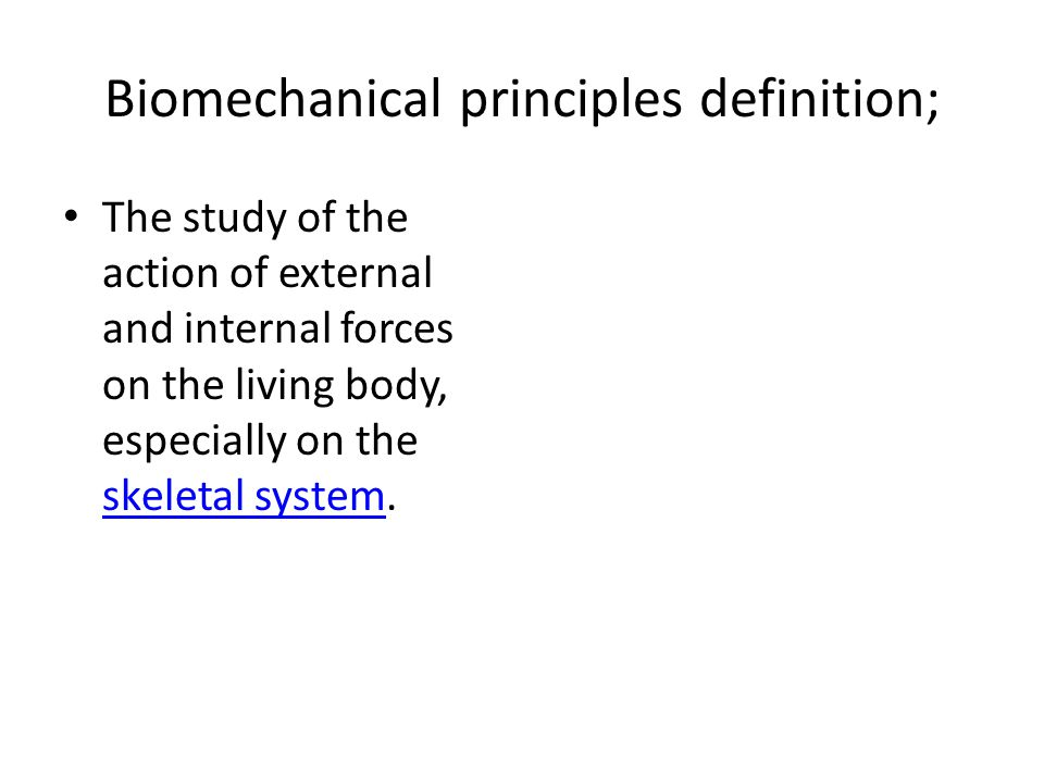 Biomechanical principles definition; The study of the action of external and internal forces on the living body, especially on the skeletal system. sk