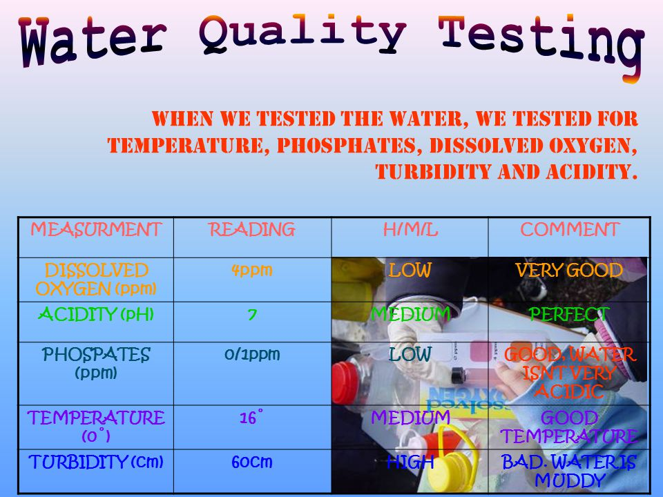 When we tested the water, we tested for Temperature, Phosphates, Dissolved Oxygen, Turbidity and acidity.