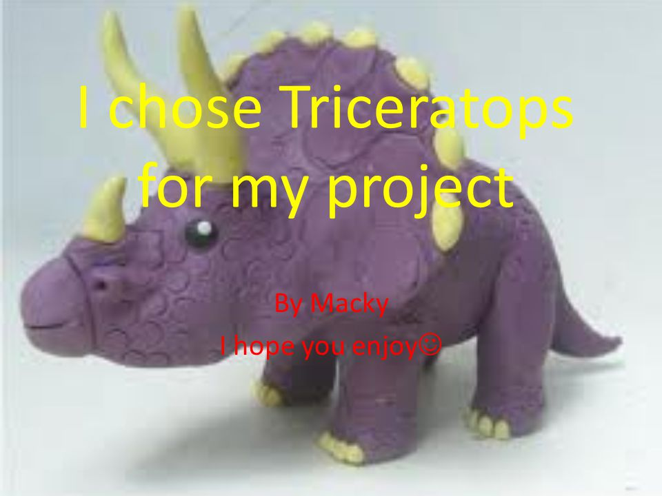 I chose Triceratops for my project By Macky I hope you enjoy