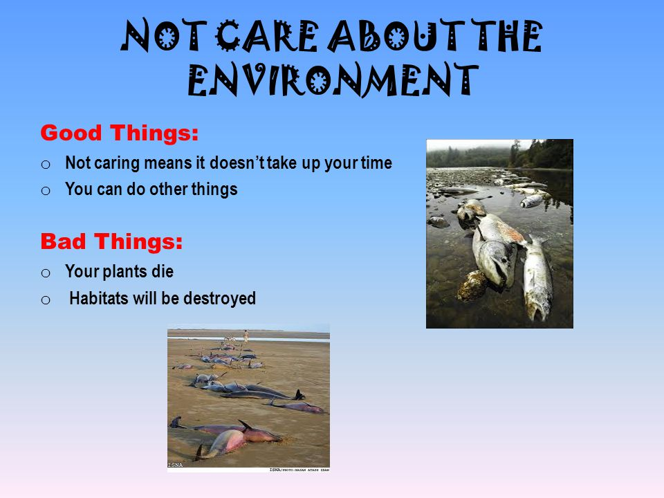 NOT CARE ABOUT THE ENVIRONMENT Good Things: o Not caring means it doesn't take up your time o You can do other things Bad Things: o Your plants die o