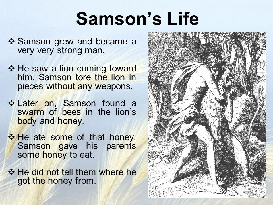 Samson's Life  Samson grew and became a very very strong man.