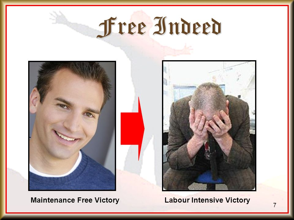 Free Indeed 7 Maintenance Free VictoryLabour Intensive Victory