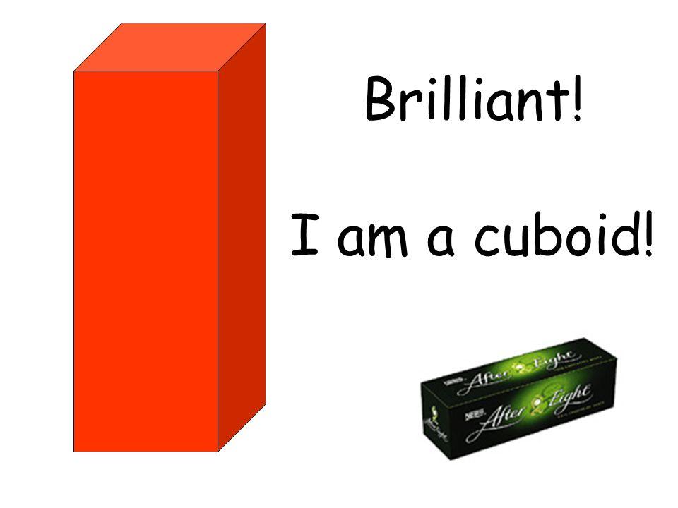 Brilliant! I am a cuboid!