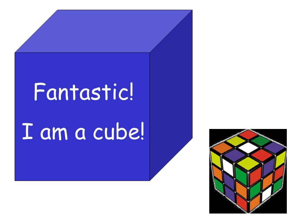 Fantastic! I am a cube!