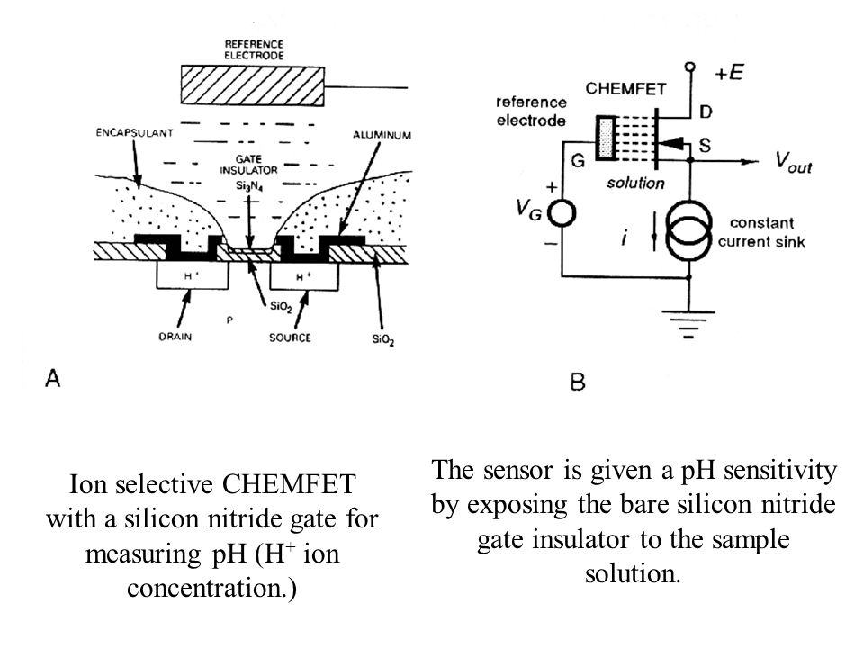 Ion selective CHEMFET with a silicon nitride gate for measuring pH (H + ion concentration.) The sensor is given a pH sensitivity by exposing the bare