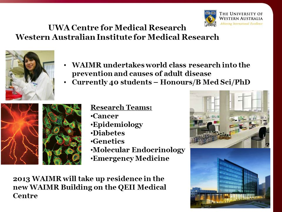 UWA Centre for Medical Research Western Australian Institute for Medical Research WAIMR undertakes world class research into the prevention and causes of adult disease Currently 40 students – Honours/B Med Sci/PhD Research Teams: Cancer Epidemiology Diabetes Genetics Molecular Endocrinology Emergency Medicine 2013 WAIMR will take up residence in the new WAIMR Building on the QEII Medical Centre