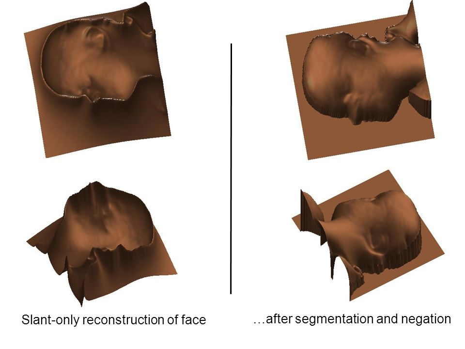 Slant-only reconstruction of face …after segmentation and negation