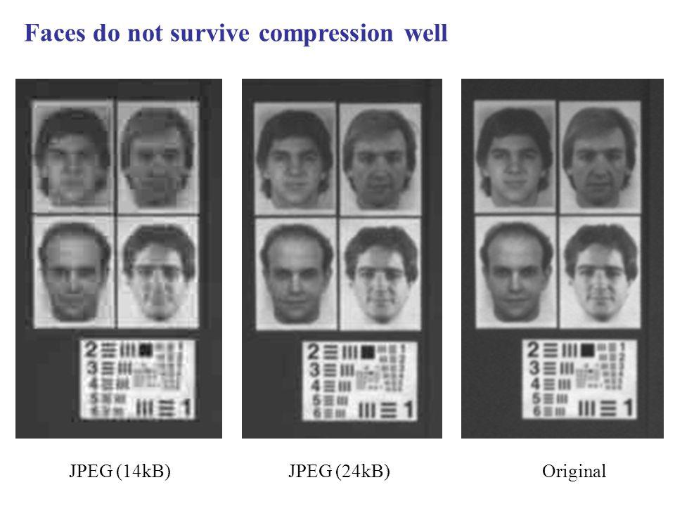 JPEG (14kB)JPEG (24kB)Original Faces do not survive compression well