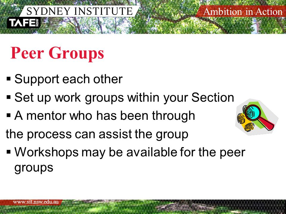 Ambition in Action   Peer Groups  Support each other  Set up work groups within your Section  A mentor who has been through the process can assist the group  Workshops may be available for the peer groups