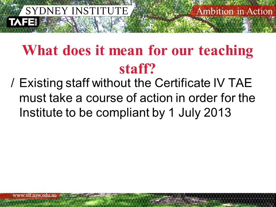 Ambition in Action www.sit.nsw.edu.au Sydney Institute's Approach /Focus on the qualification /Investment in staff /RPL Approach Why not provide opportunities for equivalency?