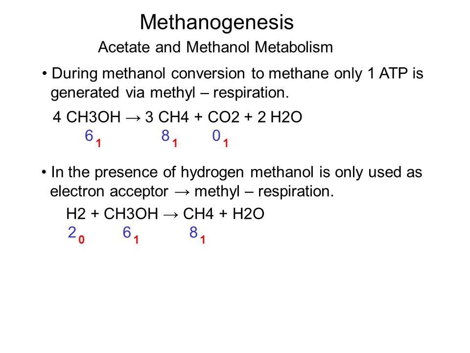 Methanogenesis 6 1 Acetate and Methanol Metabolism During methanol conversion to methane only 1 ATP is generated via methyl – respiration.
