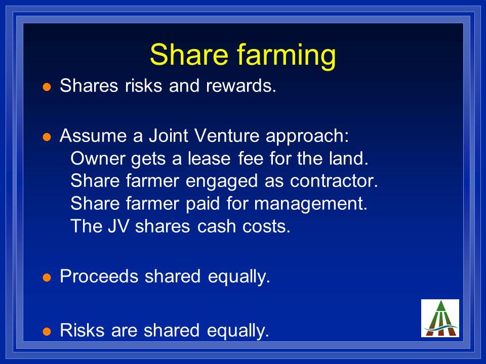 Share farming Shares risks and rewards.