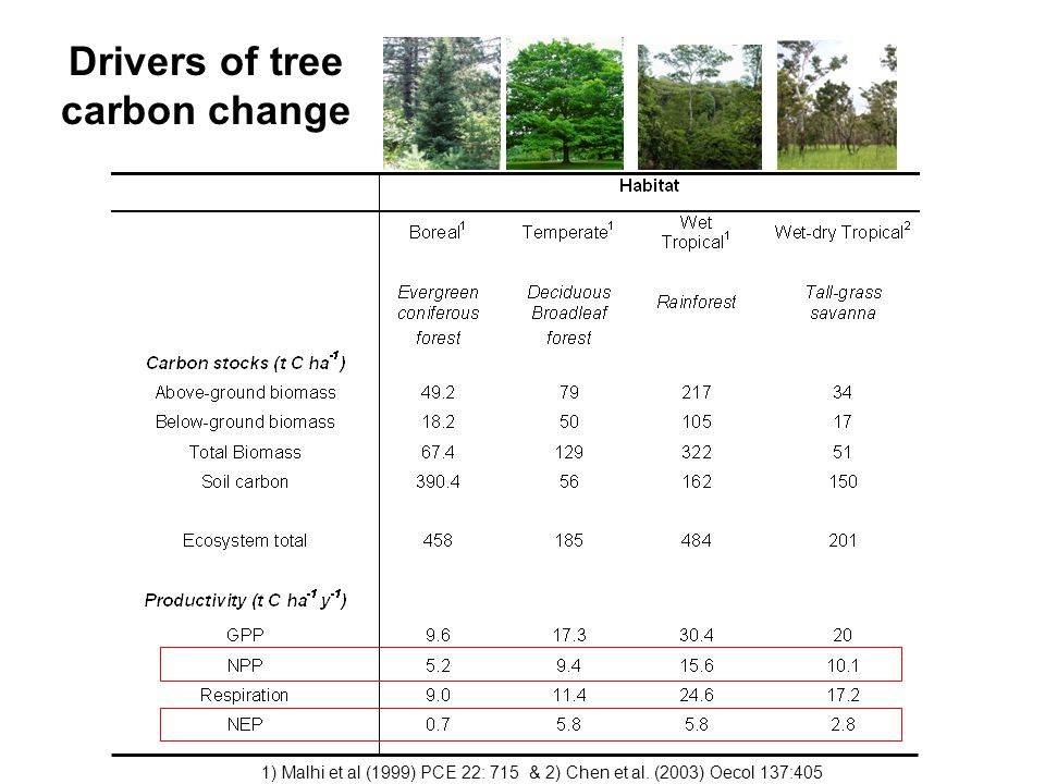 Drivers of tree carbon change 1) Malhi et al (1999) PCE 22: 715 & 2) Chen et al.