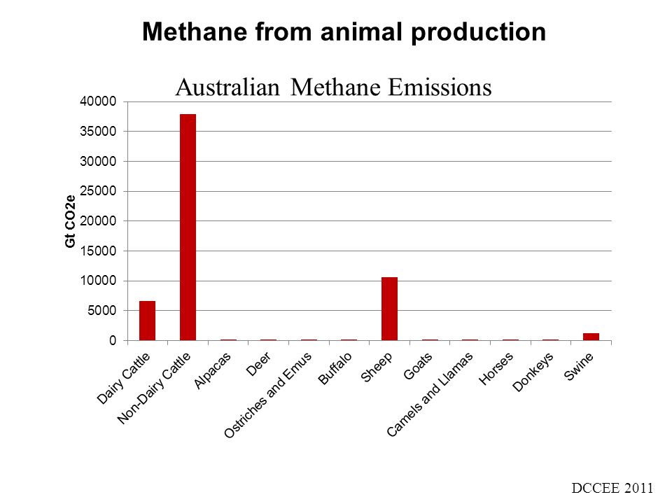 Methane from animal production DCCEE 2011 Australian Methane Emissions