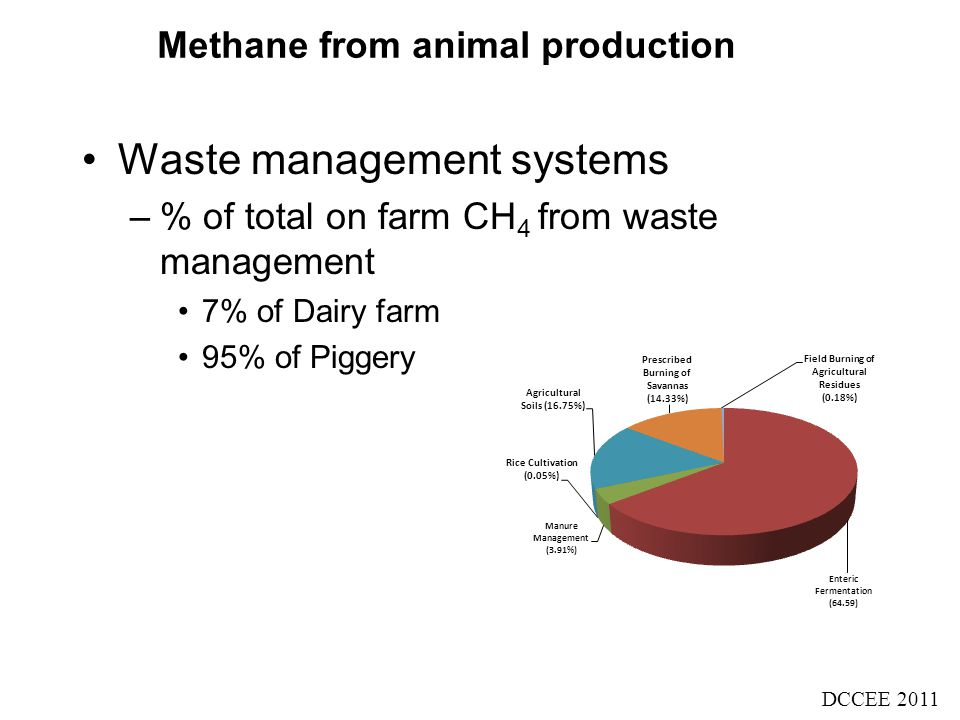 Methane from animal production Waste management systems –% of total on farm CH 4 from waste management 7% of Dairy farm 95% of Piggery DCCEE 2011