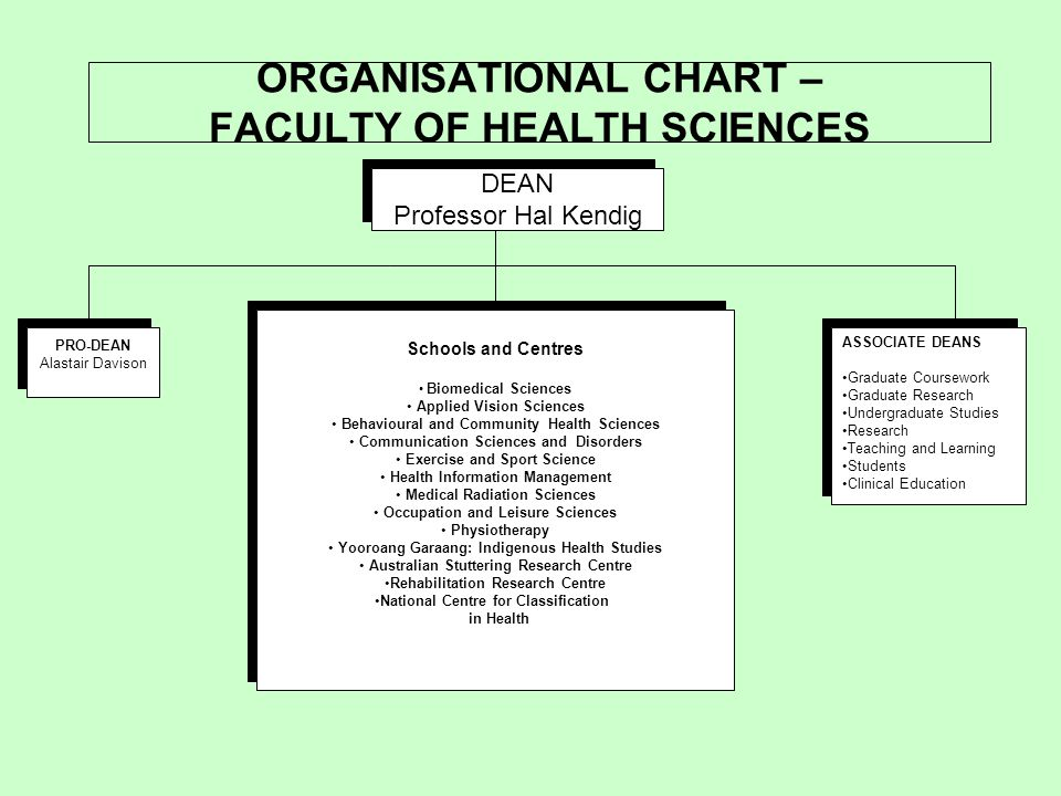 ORGANISATIONAL CHART – FACULTY OF HEALTH SCIENCES DEAN Professor Hal Kendig DEAN Professor Hal Kendig PRO-DEAN Alastair Davison PRO-DEAN Alastair Davison Schools and Centres Biomedical Sciences Applied Vision Sciences Behavioural and Community Health Sciences Communication Sciences and Disorders Exercise and Sport Science Health Information Management Medical Radiation Sciences Occupation and Leisure Sciences Physiotherapy Yooroang Garaang: Indigenous Health Studies Australian Stuttering Research Centre Rehabilitation Research Centre National Centre for Classification in Health Schools and Centres Biomedical Sciences Applied Vision Sciences Behavioural and Community Health Sciences Communication Sciences and Disorders Exercise and Sport Science Health Information Management Medical Radiation Sciences Occupation and Leisure Sciences Physiotherapy Yooroang Garaang: Indigenous Health Studies Australian Stuttering Research Centre Rehabilitation Research Centre National Centre for Classification in Health ASSOCIATE DEANS Graduate Coursework Graduate Research Undergraduate Studies Research Teaching and Learning Students Clinical Education ASSOCIATE DEANS Graduate Coursework Graduate Research Undergraduate Studies Research Teaching and Learning Students Clinical Education