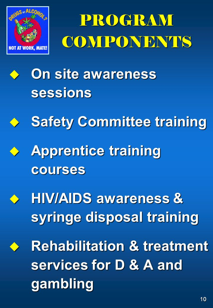 10 PROGRAM COMPONENTS  On site awareness sessions  Safety Committee training  Apprentice training courses  HIV/AIDS awareness & syringe disposal t