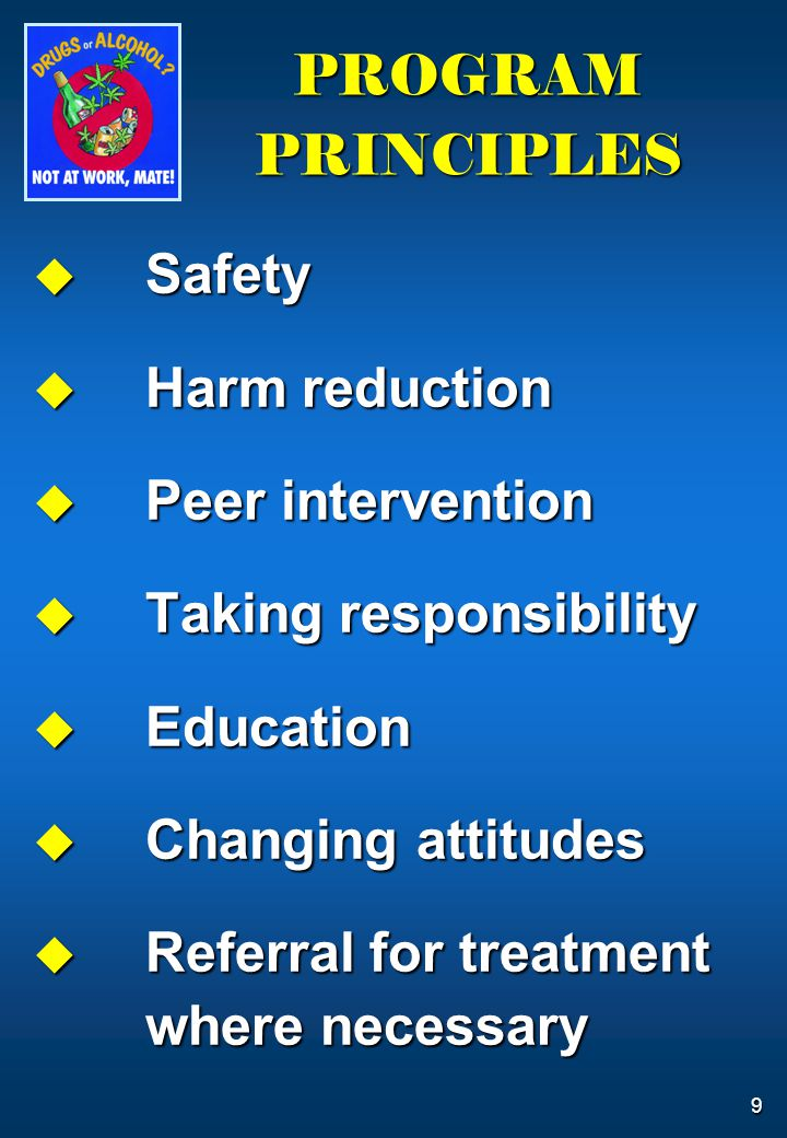 9 PROGRAM PRINCIPLES  Safety  Harm reduction  Peer intervention  Taking responsibility  Education  Changing attitudes  Referral for treatment where necessary