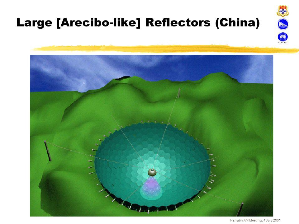 Narrabri AM Meeting, 4 July 2001 Large [Arecibo-like] Reflectors (China)